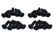 20-Black-Screws